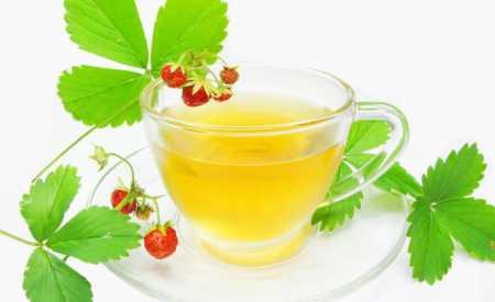 Čaj z lesních jahodových lístků