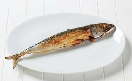 Makrela grilovaná